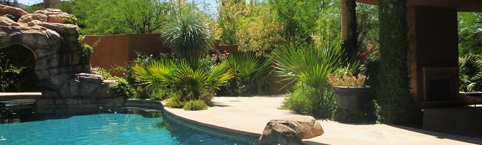 Residential landscaping in Tucson