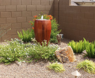 How to Save Your Plants from the Arizona Heat