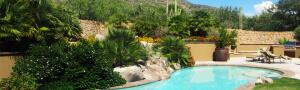 Tucson landscape portfolio