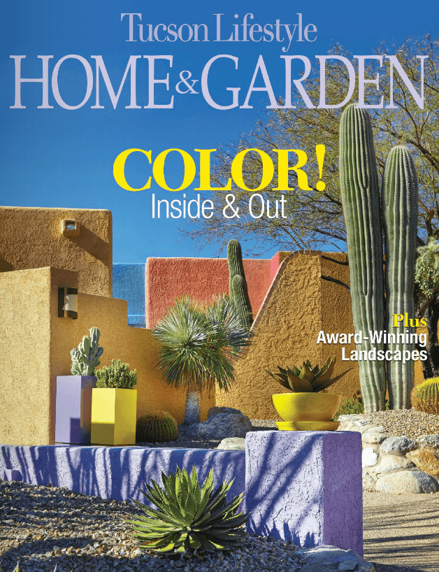 Tucson Lifestyle Home and Garden April 2015 (4)